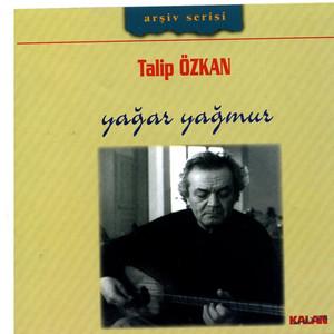 Burhanettin Talip Özkan