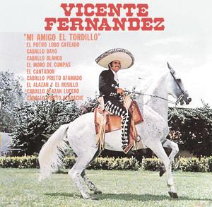 Mi Amigo El Tordillo Albumcover