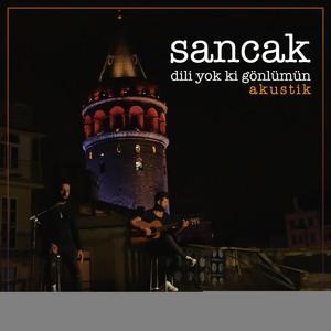 Dili Yok ki Gönlümün (Akustik) Albümü