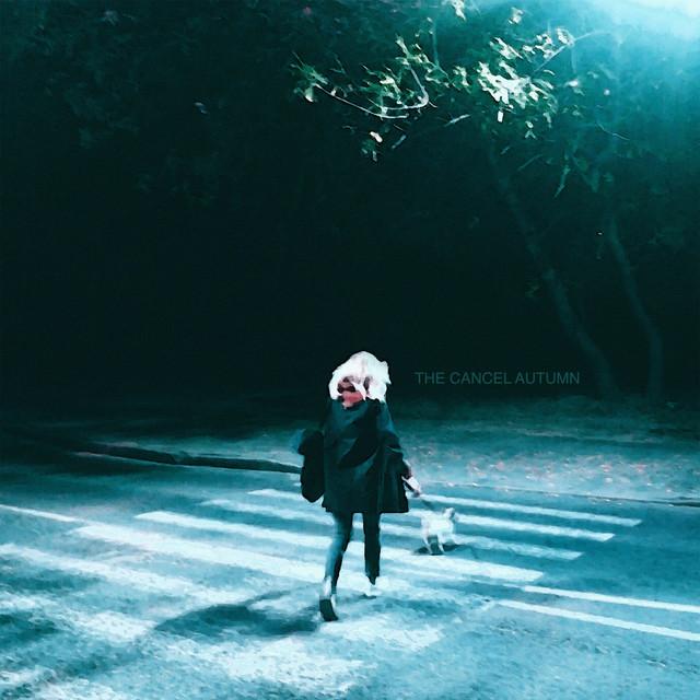 The Cancel Artist | Chillhop