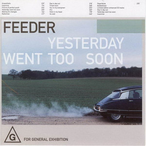 Feeder Day in Day Out cover