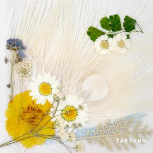 WHITE NIGHT album