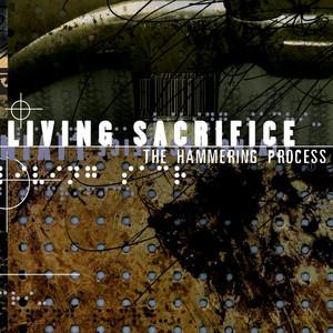 The Hammering Process album