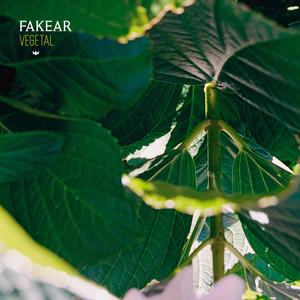 Vegetal: Offshoots EP Albümü