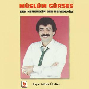 Sen Neredesin Ben Neredeyim (Arabesk 1980 - 1990) Albümü