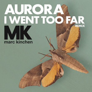 I Went Too Far  - AURORA