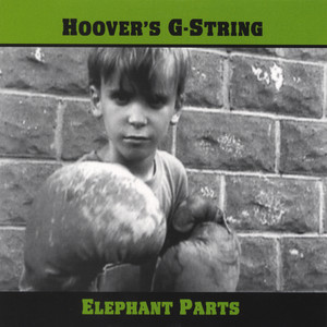 Hoover's G-String I'm On Fire cover
