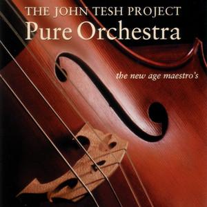 Pure Orchestra album
