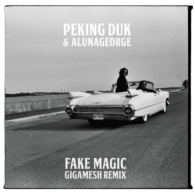Fake Magic (Gigamesh Remix)