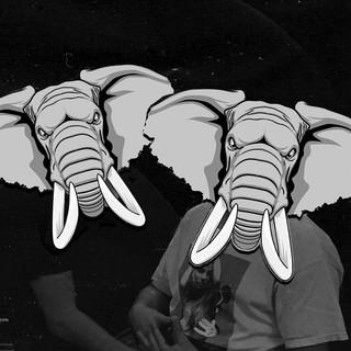 Bass Elephants