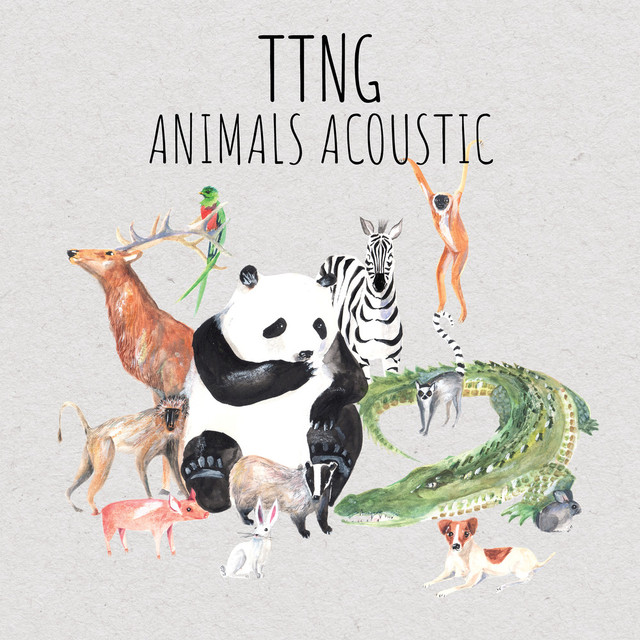 Album cover for Animals Acoustic by TTNG
