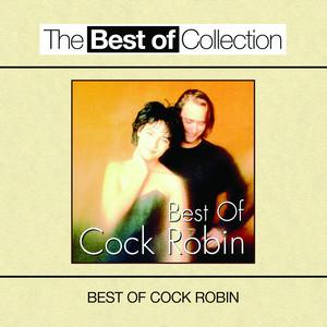 Best Of Cock Robin album