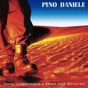 Non Calpestare I Fiori Nel Deserto Albumcover