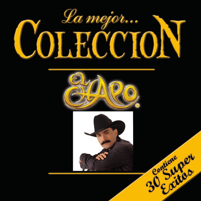 si yo fuera ladr u00f3n  a song by el chapo de sinaloa on spotify