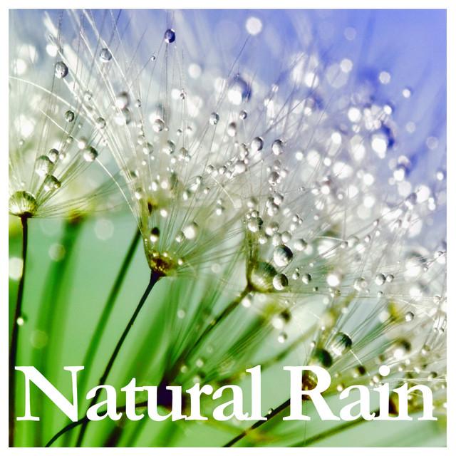 Beautiful British Rainfall, a song by Rain Sound Studio, Rain and