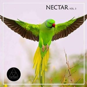 Nectar, Vol. 3 Albumcover