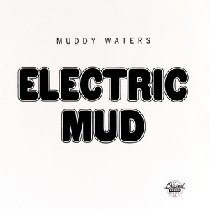 Electric Mud album
