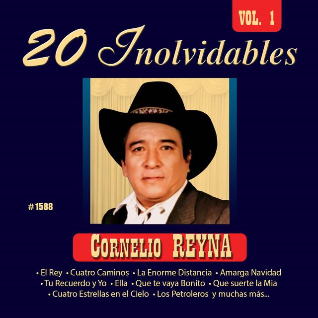 20 Inolvidables, Vol. 1