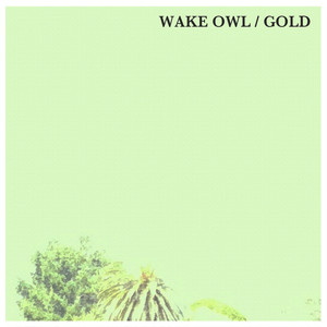 Gold - Wake Owl