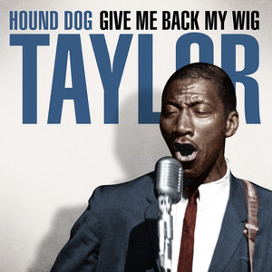Hound Dog Taylor, Taylor She's Gone cover