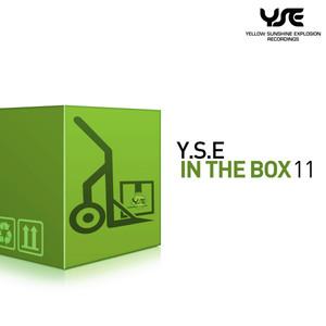 Y.S.E. In the Box, Vol. 11 album