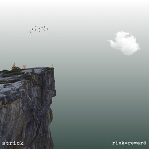 risk=reward album