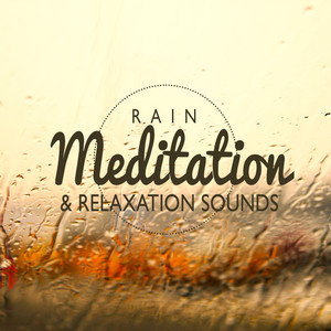 Rain Meditation & Relaxation Sounds Albumcover