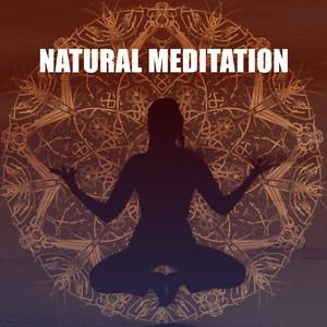 Natural Meditation – Relaxing Music, Soft Nature Sounds, Yoga Practice, Mindfulness, Rest Albümü