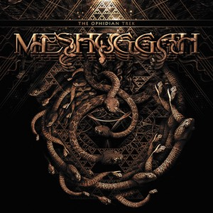 Dancers To A Discordant System Lyrics & Tabs by Meshuggah