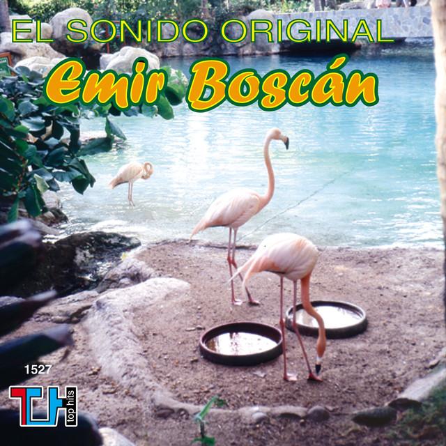Emir Boscan Y Los Tomasinos