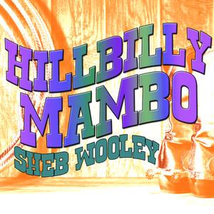 Hillbilly Mambo album