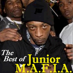 Junior M.A.F.I.A. Can I Get Witcha cover