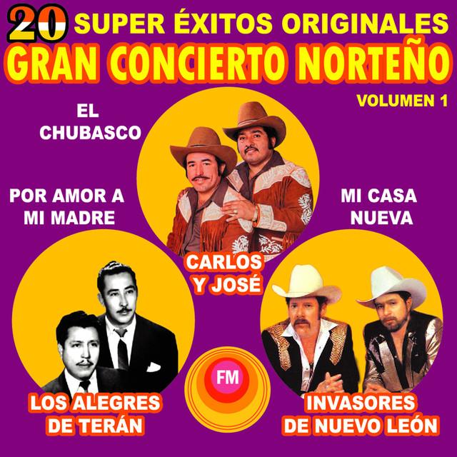 Various Artists 20 Súper Éxitos album cover