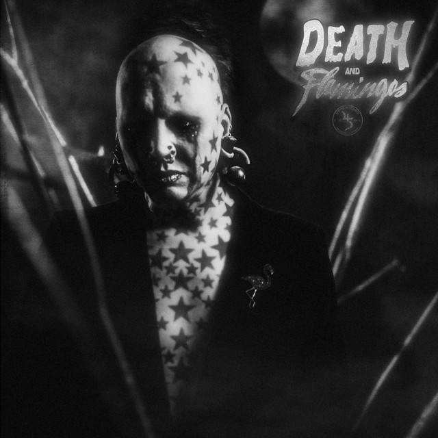 Album cover for Death and Flamingos by Sopor Aeternus & The Ensemble Of Shadows