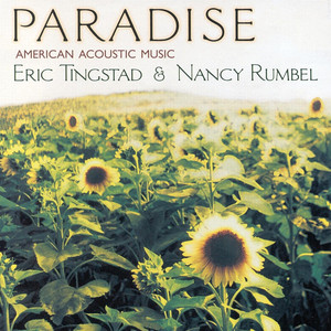 Eric Tingstad Fields Of Gold cover