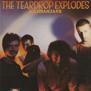The Teardrop Explodes, Hugh Jones Traison (C'Est Juste Une Histoire) cover