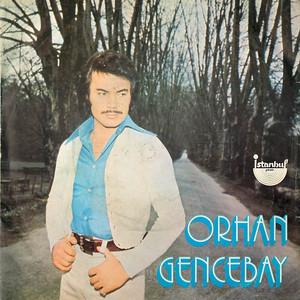 Sevenler Mesut Olmaz (45'lik) Albümü