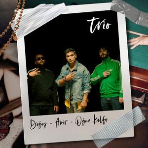 Trio Albümü
