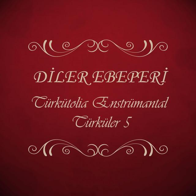 Türkütolia Enstrümantal Türküler, Vol. 5