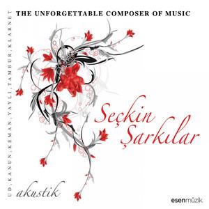 Seçkin Şarkılar (The Unforgettable Composer of Music / Akustik) Albümü