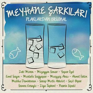 Meyhane Şarkıları (Plaklardan Orijinal) Albümü