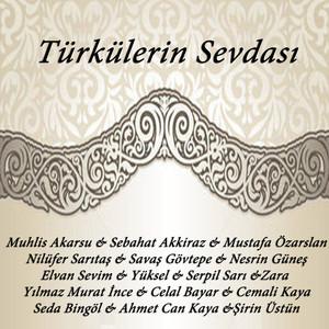 Türkülerin Sevdası Albümü