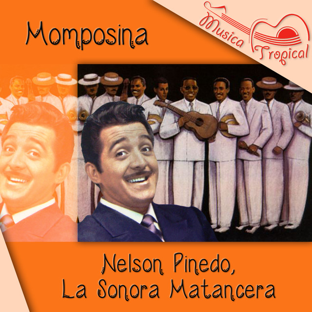 Momposina