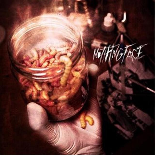 Nothingface