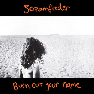 Burn out Your Name (Deluxe Edition) album