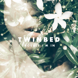 Trouble I'm In - Twinbed