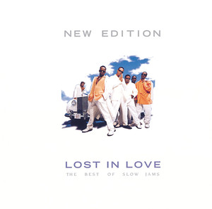Lost In Love: The Best Of Slow Jams album