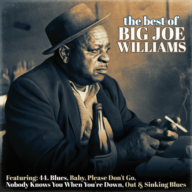 The Best of Big Joe Williams