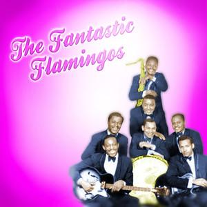 The Fantastic Flamingos album