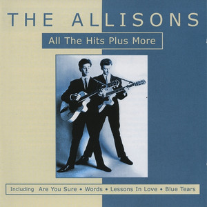 All the Hits Plus More By The Allisons album